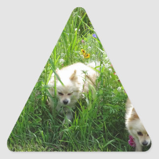 Pomeranian Triangle Sticker