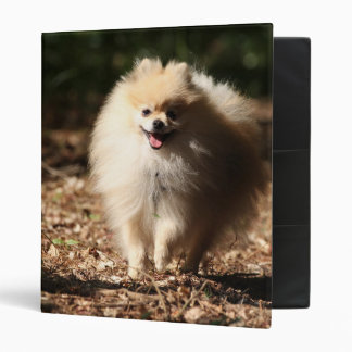 Pomeranian Trotting in the Fallen Leaves Vinyl Binders
