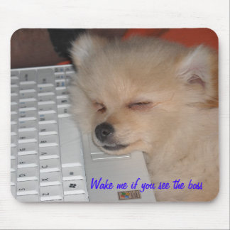 Pomeranian   Wake me if you see the boss Mouse Pad