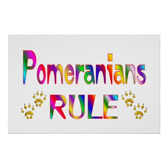 Pomeranians Rule Poster