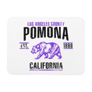 Pomona Magnet
