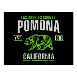 Pomona Postcard