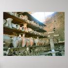 Pompeii, Storeroom for excavated pottery Poster