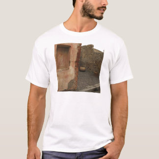 Pompeii - Wall lararium - Painting in  Niche T-Shirt
