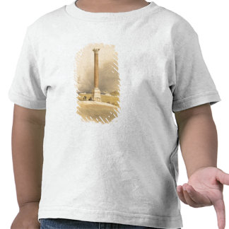 """Pompey's Pillar, Alexandria, from """"Egypt and Nubia Tee Shirt"""