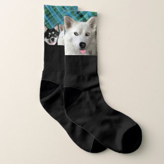 Pomsky Dogs Stretch Crew Socks