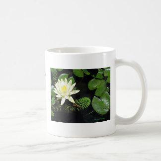Pond Beauty Coffee Mug