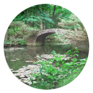 Pond Bridge Party Plate