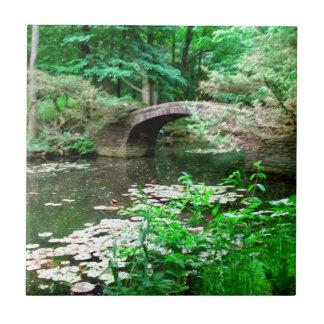 Pond Bridge Tiles