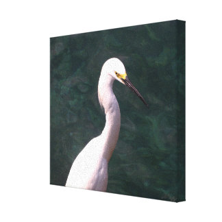 Pond for Pond Stretched Canvas Prints