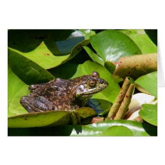 Pond Frog Card