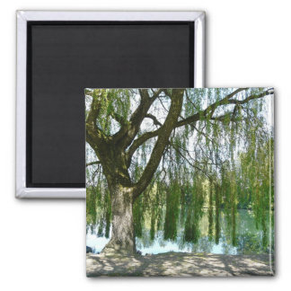 Pond through the Weeping Willow Tree Square Magnet