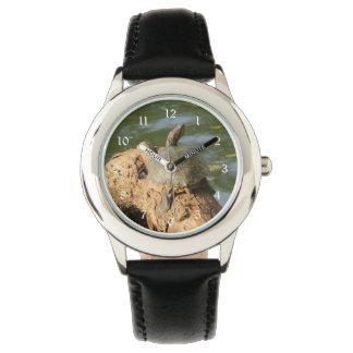 Pond Turtle Watch