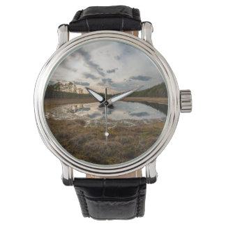 Pond Watches