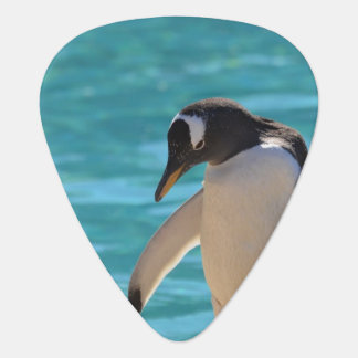 Pondering Penguin Guitar Pick