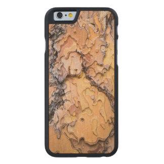 Ponderosa pine bark, Washington Carved Maple iPhone 6 Case