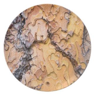 Ponderosa pine bark, Washington Plates