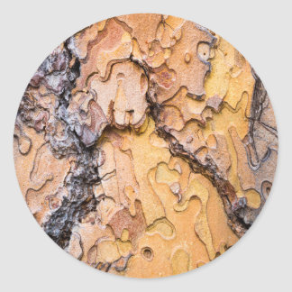 Ponderosa pine bark, Washington Round Sticker