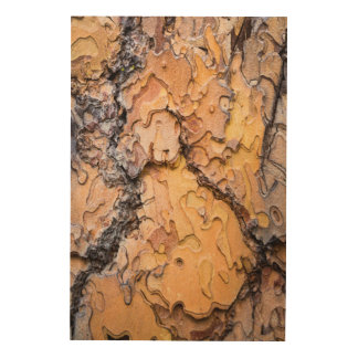 Ponderosa pine bark, Washington Wood Wall Decor