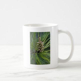 Ponderosa Pine New Growth Classic White Coffee Mug