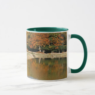 Ponies drinking mug