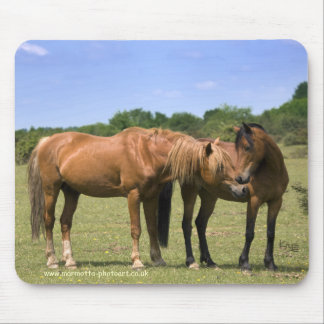Ponies in Love Mousemat Mouse Pad