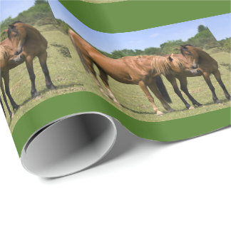 Ponies in Love Wrapping Paper