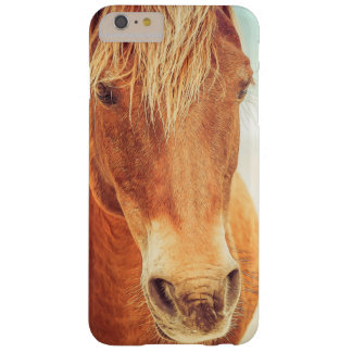 Pony by the Sea iPhone 6/6s Plus Barely There Case