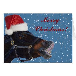 Pony Christmas Greeting Card