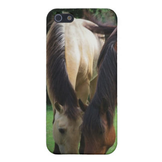 Pony Love Case For iPhone 5/5S
