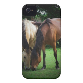 Pony Love Case-Mate iPhone 4 Case