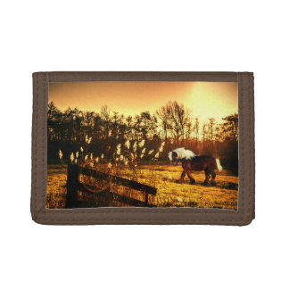 Pony or small draft horse tri-fold wallet
