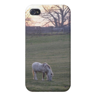 Pony Sunset Cover For iPhone 4