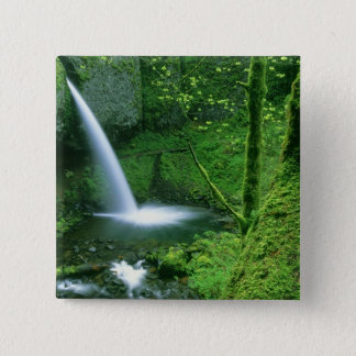 Ponytail Falls 2 Inch Square Button