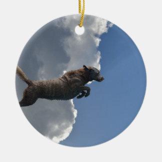 Poo Is Flying!.jpg Round Ceramic Ornament
