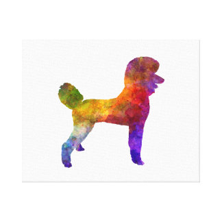 Poodle 01 in watercolor canvas print