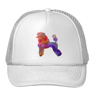 Poodle 02 in watercolor trucker hat