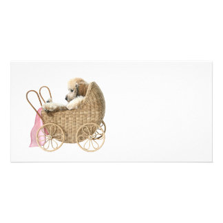 Poodle baby buggy custom photo card