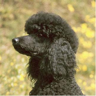 poodle black photo sculpture keychain