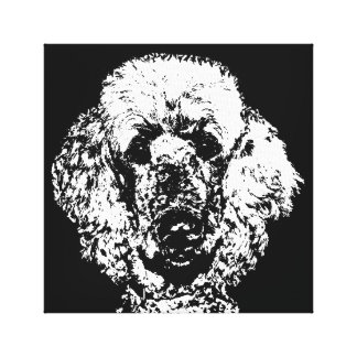 Poodle Black & White Wrapped Canvas Print Wall Art
