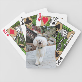 Poodle - Brulee - Trainer Bicycle Playing Cards