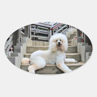 Poodle - Brulee - Trainer Oval Sticker