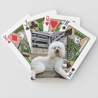 Poodle - Brulee - Trainer Poker Deck
