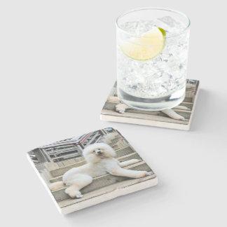 Poodle - Brulee - Trainer Stone Beverage Coaster