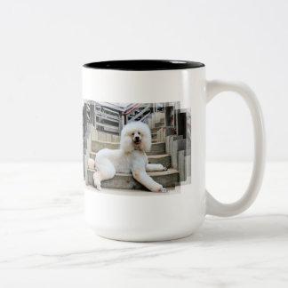Poodle - Brulee - Trainer Two-Tone Coffee Mug