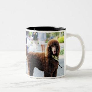 Poodle Day 2010 #2 Two-Tone Coffee Mug