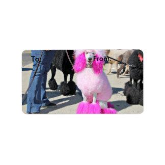 Poodle Day 2016 - Barnes - Pink Standard Poodle Label