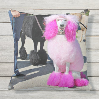 Poodle Day 2016 - Barnes - Pink Standard Poodle Outdoor Pillow