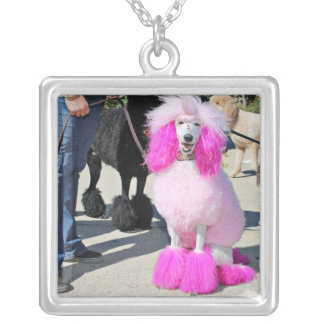 Poodle Day 2016 - Barnes - Pink Standard Poodle Silver Plated Necklace