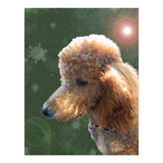 POODLE FOR THE HOLIDAYS CUSTOM LETTERHEAD